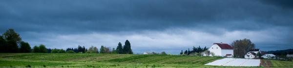Luscher Farm storm